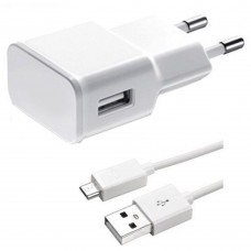 Charger for smartphones Active, USB out, Micro USB cable 1m, 5V, 2A, 2000mAh, fast charger